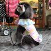犬のジャケット【Jazzy Girl】犬用ジャケット/フリースジャケット/マジックテープ仕様/犬服/犬の洋服