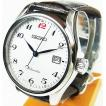 セイコー メカニカル SEIKO 腕時計 SARX041