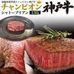 チャンピオン 神戸牛 シャトーブリアン ステーキ用 150g 冷凍便 牛肉 和牛 肉 贅沢  希少 証明書付 贈答用 霜降りお中元 敬老の日 お歳暮 内祝い 熨斗 のし