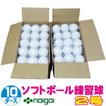 超特価 ソフトボール2号練習球 (スリケン・検定落ち・ナイガイ製) 10ダース (120球入り) Training-soft2-120