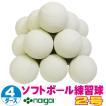 超特価 ソフトボール2号練習球 (スリケン・検定落ち・ナイガイ製) 4ダース (48球入り) Training-soft2-48