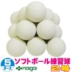 超特価 ソフトボール2号練習球 (スリケン・検定落ち・ナイガイ製) 5ダース (60球入り) Training-soft2-60