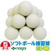 超特価 ソフトボール3号練習球 (スリケン・検定落ち・ナイガイ製) 5ダース (60球入り) Training-soft3-60