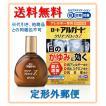 ロートアルガードクリアブロックZ 13ml 送料無料 (目のかゆみ 充血 花粉) (第2類医薬品)