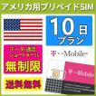 SIMカード アメリカ 海外 SIM T-Mobile プリペイドSIM 10日間 データ容量 無制限 音声通話 SMS代込み 送料無料