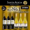 サンタアリシア 6本セット 赤ワイン 白ワイン チリ おすすめ 送料無料