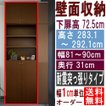 大容量壁面書庫 本棚 高さ283.1〜292.1cm幅81〜90cm奥行31cm厚棚板(耐荷重30Kg) 下扉高さ72.5cm