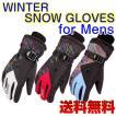 【5のつく日セール】スキー スノボ 防寒 グローブ 手袋 ウィンタースポーツ 防水 保温 送料無料