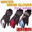 スキー スノボー 防寒 グローブ レディース 防水 保温 ウィンタースポーツ 手袋 送料無料