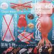 ネイチャーテクニカラーMONO PLUS 深海生物 ボールチェーン&マグネット2 5種(定形外発送可能 クレカ決済 1セットまで)