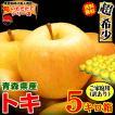 クール送料無料 あすつく りんご 5kg箱 ご家庭用 ふじ 鮮度抜群 青森 リンゴ 5キロ箱 大小様々