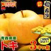 あすつく 送料無料 青森りんご 3kg箱 トキ ご家庭用 訳ありリンゴ 鮮度抜群 青森 リンゴ 3キロ箱