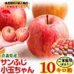 りんご 訳あり 10kg箱 クール便対応 小玉サイズ約50玉〜60玉 青森県産サンふじ10キロ箱