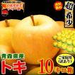りんご お取り寄せ グルメ 訳あり 食品 フルーツ fruits 詰め合わせ サンふじ 10kg 送料無料