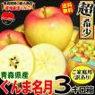 【予約】送料無料 りんご 3kg箱 ぐんま名月 ご家庭用 訳ありリンゴ 鮮度抜群 青森 リンゴ 3キロ箱