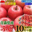 りんご 10kg箱 訳あり 送料無料 青森 リンゴ 10キロ箱...