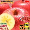 あすつく りんご 5kg箱 ふじ 訳あり【クール便対応】鮮度抜群 青森 リンゴ 5キロ箱 大小様々 常温便送料無料