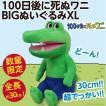 100日後に死ぬワニ BIGぬいぐるみXL/全長30cm 超大きい人形 公式 新品