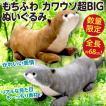 もちふわカワウソ 超BIGぬいぐるみ/もっちり伸びる素地 リアルな見た目 動物 大きい人形 新品