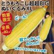 とうもろこし超超BIGぬいぐるみXL/巨大トウモロコシ 全長約80cm とにかく大きい人形 新品