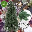 クリスマスツリー 180cm リアルスプルースツリー 木製ポット ポリ成形 ツリー 木 [ ヌードツリー ] xjbc