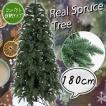クリスマスツリー 180cm リアルスプルースツリー グリーン 葉は本物のように肉厚のある ポリ成形ツリー 木 [ ヌードツリー ] xjbc