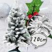 クリスマスツリー120cm フロスト 雪 スノーツリー ワイド 北欧 おしゃれ  【T】