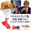 ドナルド トランプ マスク 風 仮装 変装 大統領 金髪 カツラ ネクタイ かつら+ネクタイ+まゆげセット