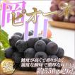 【予約】岡山県産 大粒種なしぶどう ピオーネ 2房 朝採り 贈答用  黒ぶどう バランスのよい甘味と酸味  葡萄 ブドウ 産地直送