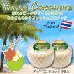 【予約販売】ヤングココナッツ 9個 ダイヤモンドカット 約8kg ヤシの実 ジュース タイ産 輸入 ココナッツ ココナツ