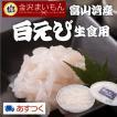 海老 白えび 生食用 富山湾産 富山県の宝石と称される白エビ 高鮮度 90g