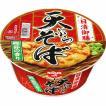 日清食品 日清御膳 天ぷらそば 1箱(12食入)