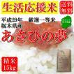 お米 15kg 栃木県 白米 一等米 あさひの夢 平成29年産 送料無料