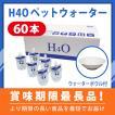 水素水 H4Oペットウォーター 60本 +ウォーターボウルセット【年中無休で即日出荷!】