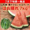 すいか スイカ 7月下旬頃から発送・山形県村山市産「ほお晴れ」 種が少ないすいか 大玉 7kg