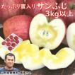 りんご 東根市産「板坂さんのたっぷり蜜入りサンふじ」 3kg(9〜11個) 送料込 スーパービッグセール