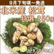 まつたけ 松茸 9月下旬頃から発送・北米産松茸 特選250g(2〜10本) 徳島県産すだち2個付 送料込