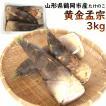 たけのこ 筍 山形県鶴岡市産「黄金孟宗」 3kg(3〜4本)