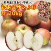 りんご 訳あり サンふじ 山形県産「訳ありサンふじ」 20kg(10kg×2箱) 送料込 スーパービッグセール