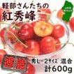 さくらんぼ 紅秀峰 ギフト 6月下旬頃から発送・軽部名人作「大粒紅秀峰」 300g×2パック(秀品2Lサイズ) バラ詰