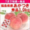 もも 桃 7月下旬頃から発送・福島県飯坂町産「あかつき」 秀品1,9kg(6〜8個)