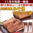 みそもち 山形県産「みそ餅」 680g(約14枚入)×2袋 中川屋菓子店 送料込