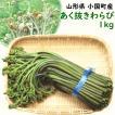 わらび 山菜 山形県小国町産「あく抜き新鮮わらび」 1kg