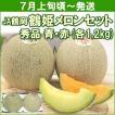 メロン JA鶴岡 鶴姫メロンセット (青肉・赤肉 各1,2kg) 計2個