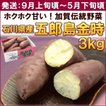 さつまいも 石川県産「五郎島金時」 3kg(10〜13本) 送料込