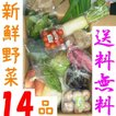 山口・九州産【送料無料】『新鮮野菜の詰め合わせ14種類』(じゃがいも・小松菜・玉ネギ・きゅうり・白ネギ他)