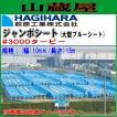 萩原工業 国産ブルーシート(ジャンボシート) 10m×15m #3000ターピー