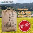 新米 玄米 平成30年産 京都府産 JA京都やましろのこだわり米 10kg ×2袋