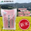 新米 うるち米(精白米)  特別栽培米 やましろの恵 5kg 30年産 京都府山城産ヒノヒカリ