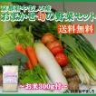 送料無料 京野菜 直売所 おまかせ 旬の野菜詰め合わせ 8〜10品 お米つき 300g